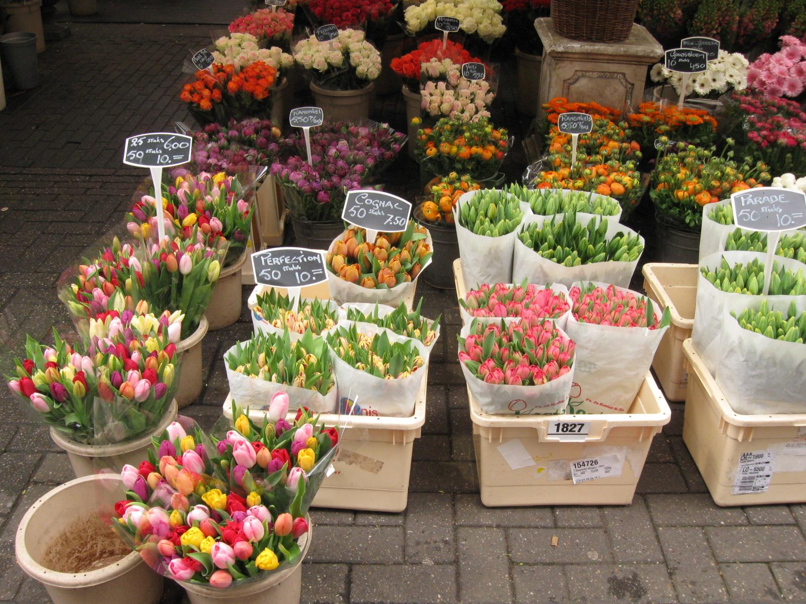 springbreak_20090407_147.jpg