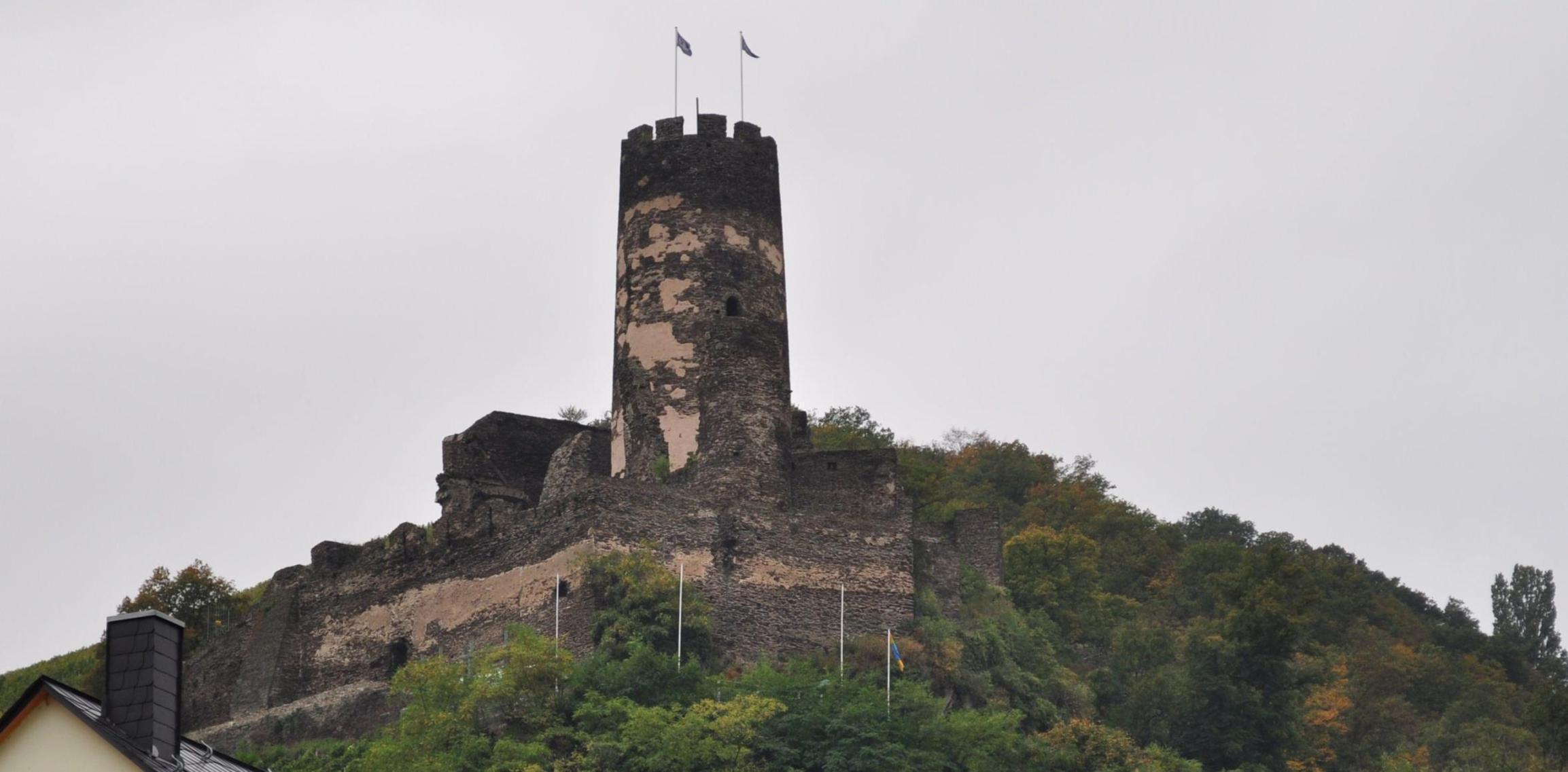 castles-on-the-rhine_2010_10_002