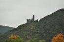 castles-on-the-rhine_2010_10_011