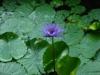 springbreak_20090410_562.jpg