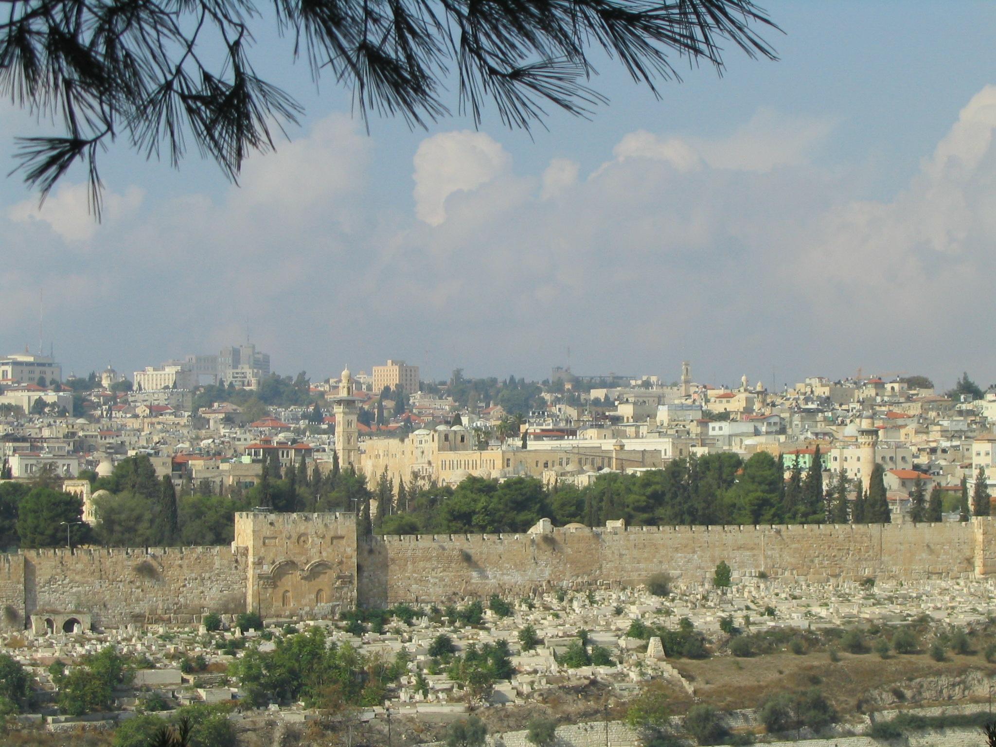 israel_20090131