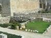 israel_20090154