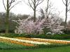 springbreak_20090408_215.jpg