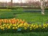 springbreak_20090408_228.jpg