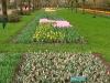 springbreak_20090408_229.jpg