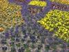springbreak_20090408_230.jpg
