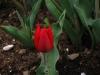 springbreak_20090408_233.jpg