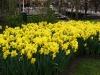 springbreak_20090408_235.jpg