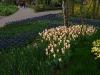 springbreak_20090408_238.jpg