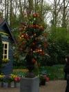 springbreak_20090408_254.jpg