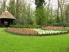 springbreak_20090408_266.jpg