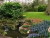 springbreak_20090408_267.jpg