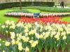 springbreak_20090408_284.jpg