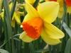 springbreak_20090408_287.jpg