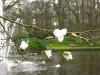springbreak_20090408_294.jpg