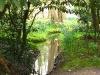 springbreak_20090408_312.jpg