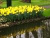 springbreak_20090408_316.jpg