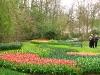 springbreak_20090408_318.jpg