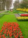 springbreak_20090408_319.jpg