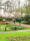 springbreak_20090408_322.jpg