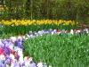 springbreak_20090408_332.jpg