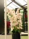 springbreak_20090408_349.jpg