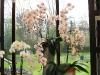 springbreak_20090408_351.jpg