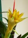 springbreak_20090408_354.jpg