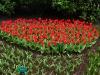 springbreak_20090408_359.jpg