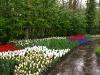 springbreak_20090408_360.jpg